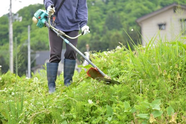 金沢市で草刈りに最適な年3回の時期~楽に草刈りを終えるコツまで徹底解説